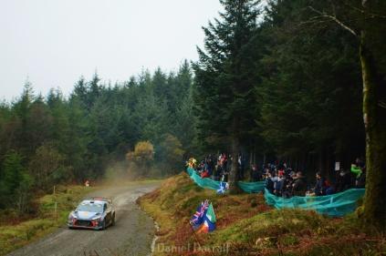 wales rally GB 13