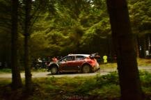 wales rally GB 2