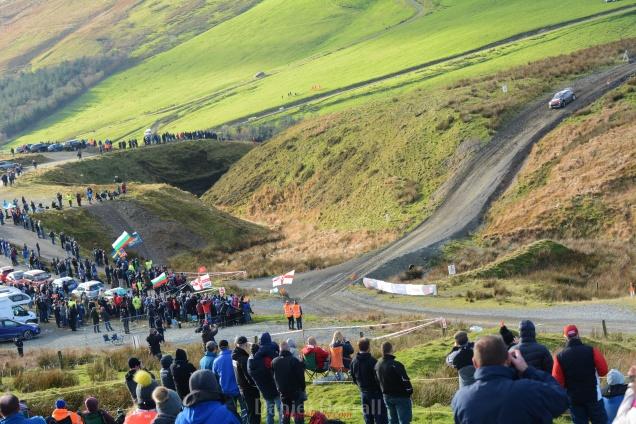 wales rally GB sweet lamb11