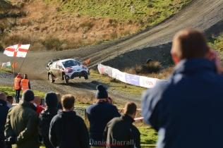 wales rally GB sweet lamb9