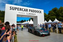 goodwood 20193