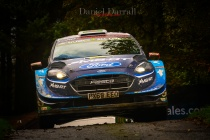 2019_ day 3 wales rally Gb 6