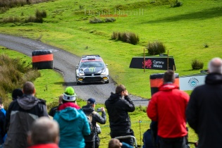 2019_ day 3 wales rally Gb 8