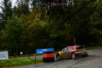 2019_D1 wales rally gb 22