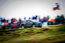 2019_Sweet lamb D2 Wales GB 5